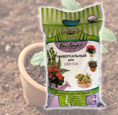 Как выращивать и удобрять растения